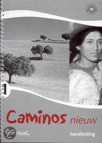 Caminos nieuw 1