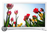 Samsung UE22H5680 - Led-tv - 22 inch - HD-ready - Smart tv