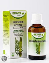 Biover Equisetum Arvense Tinctuur