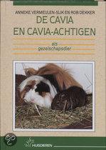 De Cavia En Cavia-Achtige Als Gezelschapsdier
