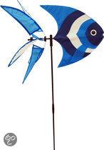 Rhombus Windmill Fish