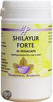 Holisan Shilayur Forte - 45 vc