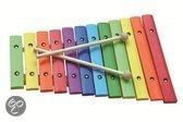 Xylofoon Hout - 12 toons - Gekleurd