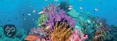 Heye Puzzel - Coral Reef