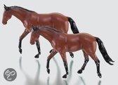 2 Paarden