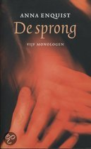 De sprong (ebook)