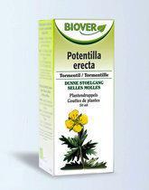 Biover Potentilla Erecta Tinctuur
