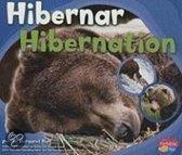 Hibernar/Hibernation