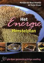 Het Energie Herstelplan Waal Malefijt, M. de