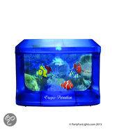 Aquarium Met Licht