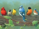 Reeves Schilderen op nummer Rail Birds