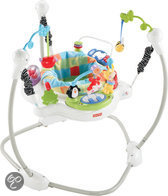 Fisher-Price Rainforest Discover 'n Grow Jumperoo