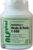 Alfytal Brain & Body 500 (Module 3) - 90 capsules