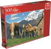 Mare and  foals in the Alps