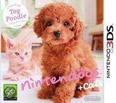 Foto van Nintendogs + Cats: Toy Poedel + Nieuwe Vrienden