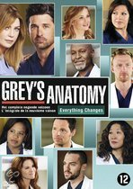 Grey's Anatomy - Seizoen 9