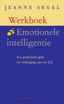 Werkboek Emotionele Intelligentie