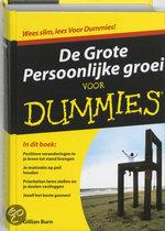 Books for Singles / Lifestyle / Persoonlijke groei / De grote persoonlijke groei voor Dummies