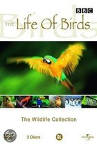 BBC: The Wildlife Collection - Life Of Birds