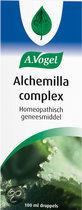 A.Vogel Alchemilla complex - 100ml druppels - Voedingssupplement
