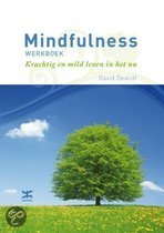 Mindfulness werkboek