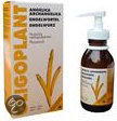 Oligoplant Angelica Archangelica - 125 ml