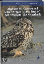 Algemene En Schaarse Vogels Van Nederland