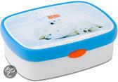 Ijsbeer Lunchbox
