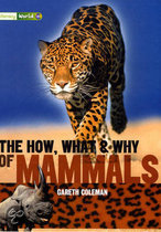 Literacy World Stage 3 Non-Fiction: The How, What And Why Of Mammals (6 Pack)