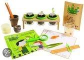 Navir Green factory: hoe groeien planten