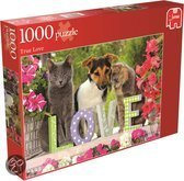 True Love 1000 pc