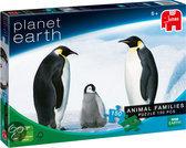Planet Earth - Animal Families: Pinguïn