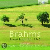 Brahms: Piano Trios Nos. 1 & 3 (1CD)
