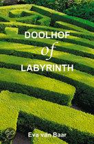 Doolhof of labyrinth