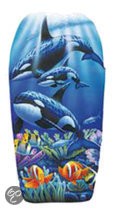 Orca Bodyboard