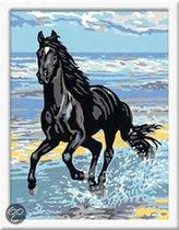 Schilderen op Nummer - Paard in de Branding
