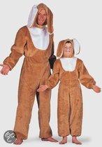 Haas kostuum voor kinderen 164