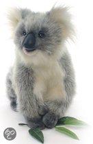 Koala knuffel 23cm