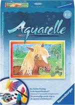 Aquarelle Mini Paard