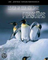 Leven in een Kolonie - Pinguins