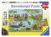 Ravensburger Puzzel In de wildernis - Kinderpuzzel - 2x 20 Stukjes