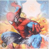 Disney Memo blaadjes spiderman (200 stuks) 9x9cm