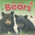 Look, We Are Bears