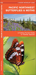 Pacific Northwest Butterflies & Moths: An Introduction to Familiar Species