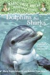 Dolphins and Sharks: A Nonfiction Companion to Magic Tree House #9: Dolphins at Daybreak