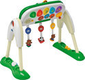 Chicco Baby Gym Deluxe