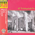 Unforgettable Fire -180 G