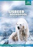 BBC Earth - De IJsbeer En Zijn Noordpool