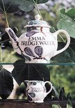 Emma Bridgewater