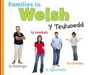 Families in Welsh